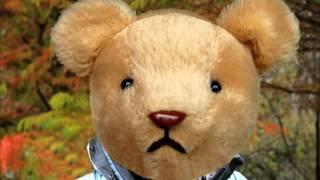 Thunder Buddy Ash Bear Song