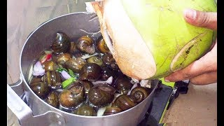 Boil Snail with Coconut Water - Asian Food Recipes, Cambodian food Cooking, Village Food Factory