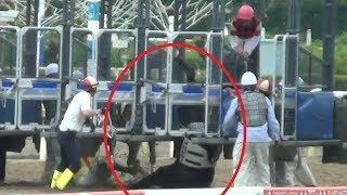 ゲート内で事件が起きた、、東京シティ競馬にて