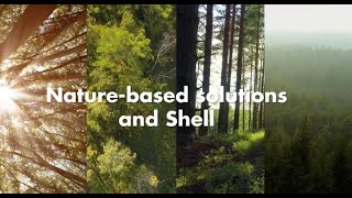 Nature-based solutions and Shell | New Energies