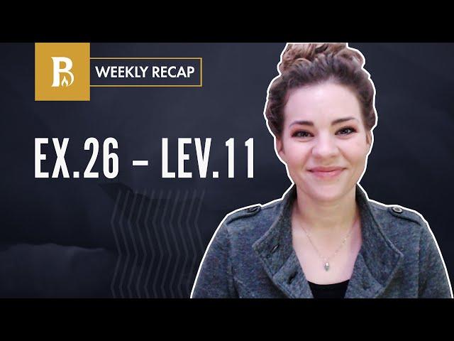 Weekly Recap | Exodus 26-40 + Leviticus 1-11