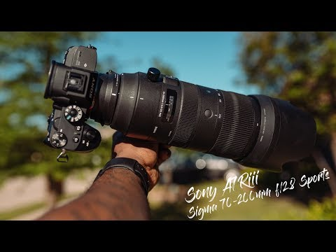 Using The Sigma 70 200mm f:2 8 sports with the Sony A7riii