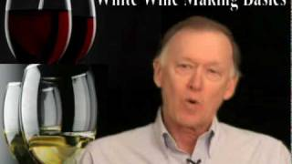 Basic White Wine Making