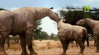 Загадки исчезнувших великанов - смотри на Viasat Nature