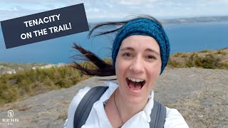 What I Learned From A Bumblebee | Hiking the East Coast Trail