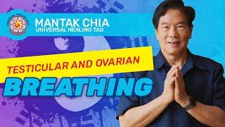 Mantak Chia Testicle&Ovarian Breathing