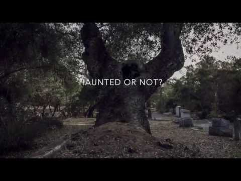 Ghostly Travels- Nordhoff Cemetery