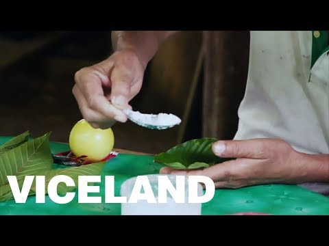 Hamilton Morris Meets with Folk Healers of Thailand