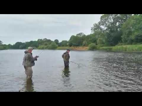 Fly Fishing River Eden.