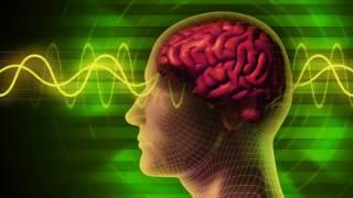 الدكتور جو Dispenza كيفية إنشاء نفسك الأسلاك الدماغ