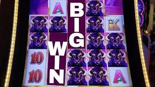Buffalo Grand Slot Machine Max Bet MASSIVE LINE Hit | Live Slot Play w/NG Slot