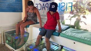 Fish Feet Pedicure - A Kid's Experience at Fish Spa (4K)