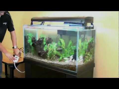How to clean your aquarium with the aqueon siphon vacuum for Petco fish aquariums