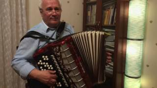 Ирфан Файзулин татарский баянист на свадьбу