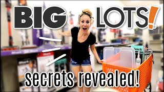 WHY YOU SHOULD BE SHOPPING AT BIG LOTS! ? (not sponsored, furniture, home decor and more!)