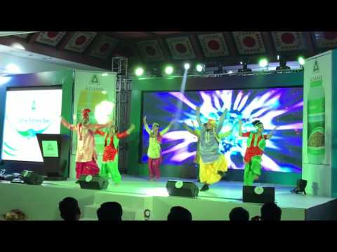 Attractions dance company Punjabi dance sequence  jaipur -Delhi