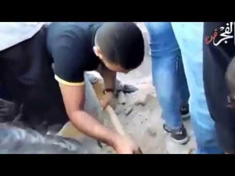 لحظة-دفن-جثمان-الفنان-محمود-عبد-العزيز-في-مقابر-الأسرة-بالإسكندرية