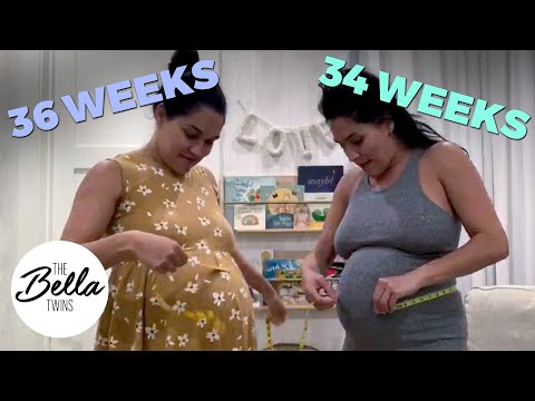 Bella Baby Watch: Nikki and Brie MEASURE their BELLIES TOGETHER