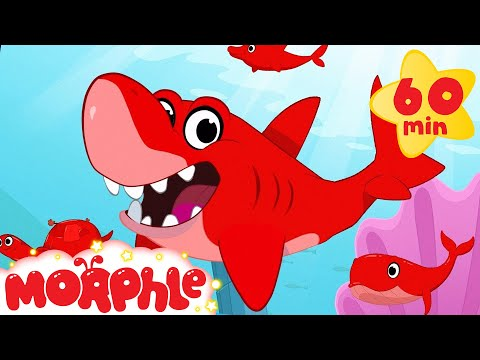 Shark, Dolphin, Turtle, and Whale Morphle shorts +1 hour Morphle kids compilation)