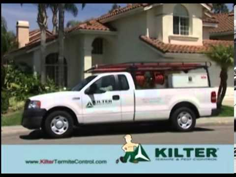 Kilter Commercial Termite And Pest Control