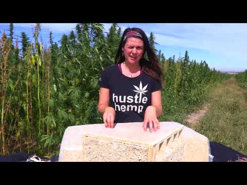 Build your house with  hemp