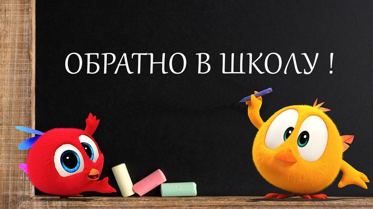 Где Чики? 💥 Chicky НОВАЯ СЕРИЯ!   ОБРАТНО В ШКОЛУ   Сборник мультфильмов на русском языке