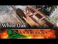 Sawing White Oak and Solar Kiln Build