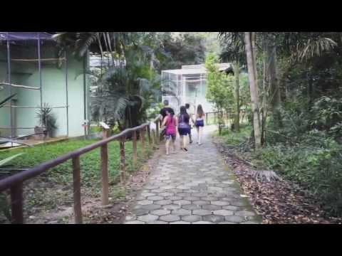 Zoológico Municipal de Mogi Mirim #zoomogimirim