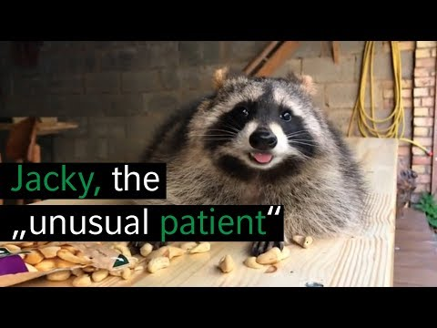 "An ""unusual patient"""