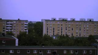 Holma - Känn igen