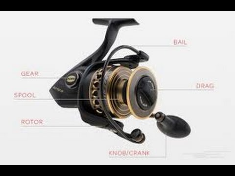 Learn How a Spinning Reel Works and Understand Each Types of