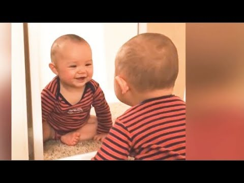 Baby Sees Mirror For The First Time - Babies Discovering Mirrors for the First TIme Compilation 2019