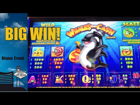 Whales of cash slot machine jackpot gambling articles addiction