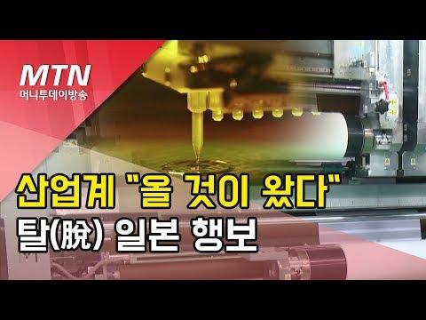 """[백색국가제외]산업계 """"올 것이 왔다""""…탈 일본산으로 활로 찾는다/ 머니투데이방송 (뉴스)"""