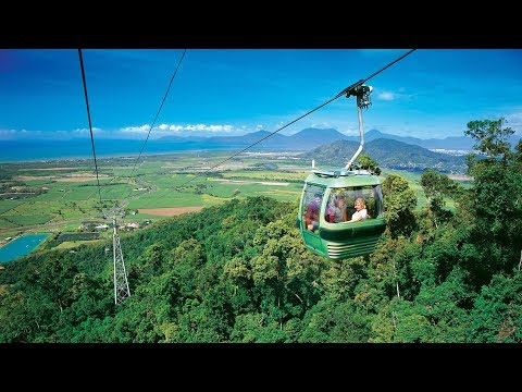 Cairns - Skyrail Rainforest Cableway Day Trip