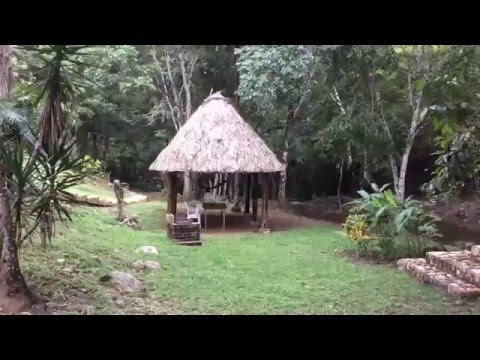 Wilson Farm located in the Cayo District of Belize For Sale