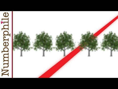 Tree Gaps and Orchard Problems - Numberphile