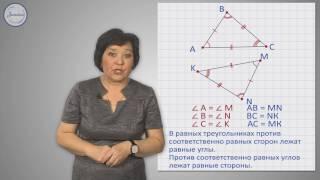 Геометрия 7 Первый признак равенства треугольников