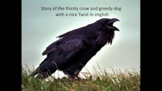Pathan girl gives a new twist to the Thirsty Crow story