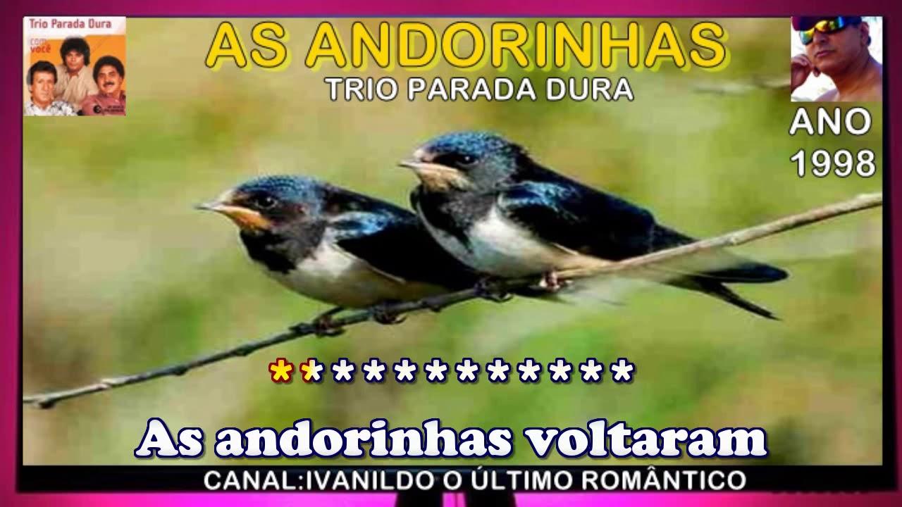 PARADA BAIXAR AS DURA ANDORINHAS TRIO