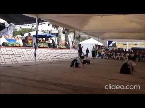 Danza Muyurina. Sombrero De Oro Iluman 2019