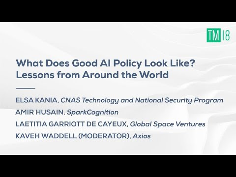 What Does Good AI Policy Look Like? Lessons from Around the World- Time Machine 2018