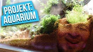 Boden, der die Welt bedeutet - Projekt: Aquarium