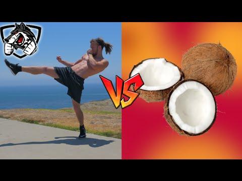 Muay Thai vs Coconut: Front Kick (Teep)