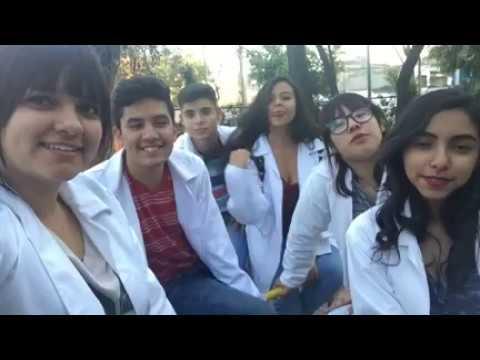 Servicio Social - Fila 2 - 502-5020 CLAM 2017