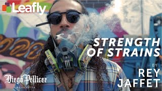 Strength of Strains Mural - Rey Jaffet