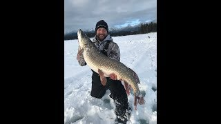 MONSTER 30 POUND PIKE!! | Ice fishing