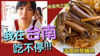 大馬人來到台南吃到停不下來快救救她!!!Tainan's food is crazy nice! Unstoppable eating!!「Vlog#20」 thumbnail