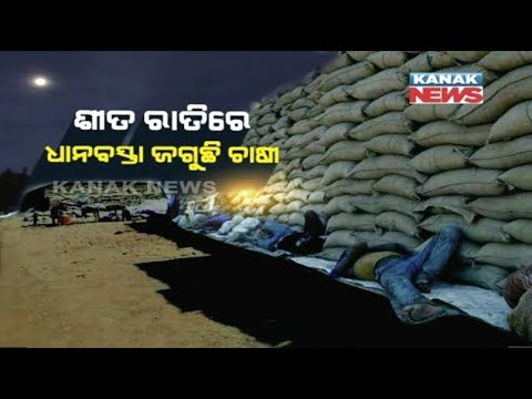 Farmers Face Problem To Sell Their Crops In Odisha