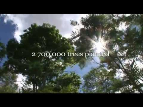 Couple Spends 20 Years Planting an Entire Forest and Animals Have Returned